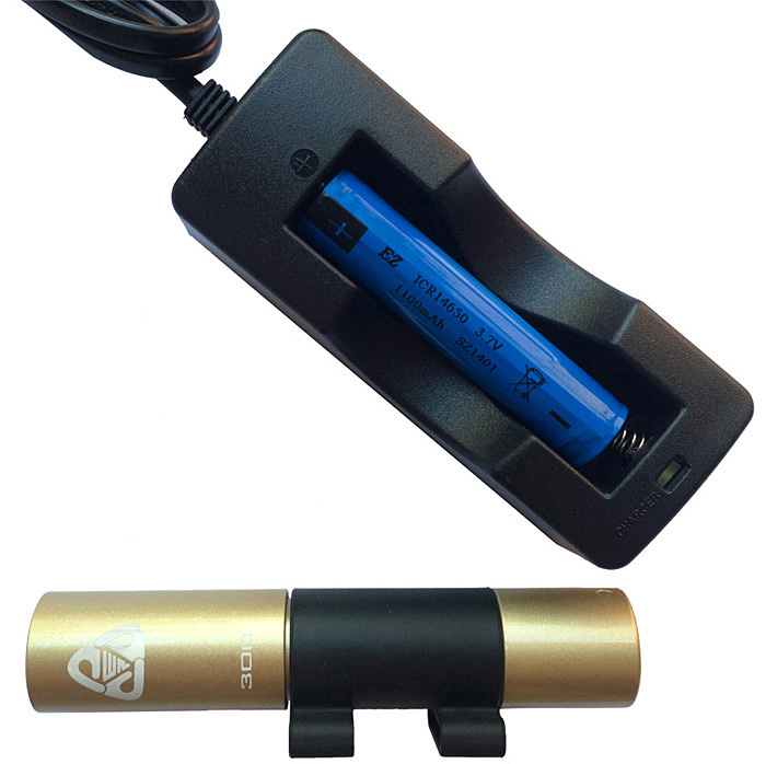 LI300 EZDIVE CREE XP-G R5 Waterproof LED Torch (300LM 1 x 14650 Battery)