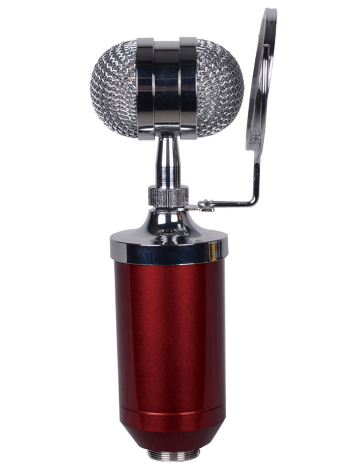 BM-8000 Professional Studio Condenser Sound Recording Microphone + Metal Shock Mount Kit for Recording