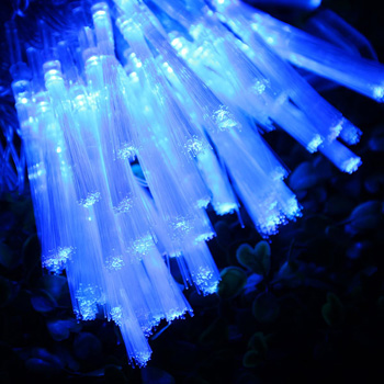10m 100 LED Blue Water-resistant Fiber Optic Fairy String Light for Wedding Christmas Party Holiday Celebration Indoor Outdoor Decoration - EU Plug
