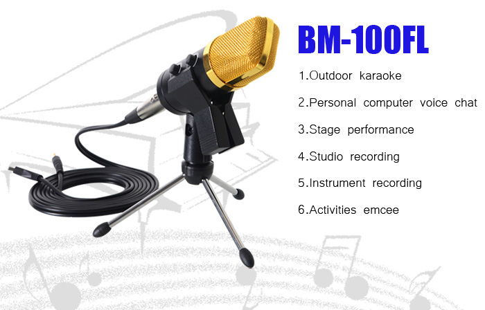 HuaShun BM100FX Cardioid Pick-Up Condenser Microphone for Network Singing Recording