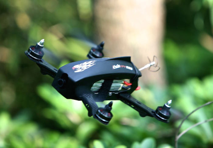 KDS Kylin KF - 250 - 02 800TVL HD Camera 2.4G 9CH 5.8G FPV 6 Axis Gyro Brushless Motor Ready to Fly Quadcopter