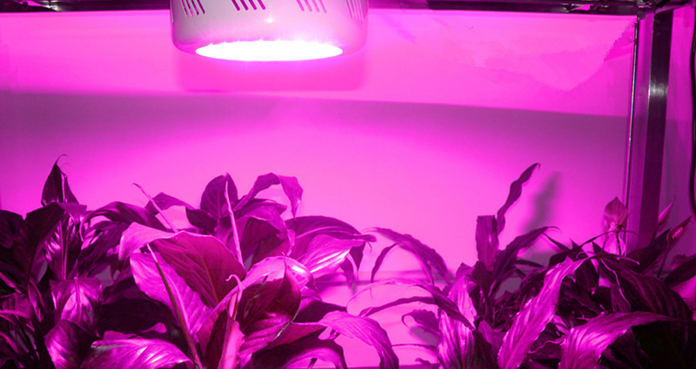 150W ( True 50W ) Mini UFO 50 LEDs Plant Grow Light 3500LM
