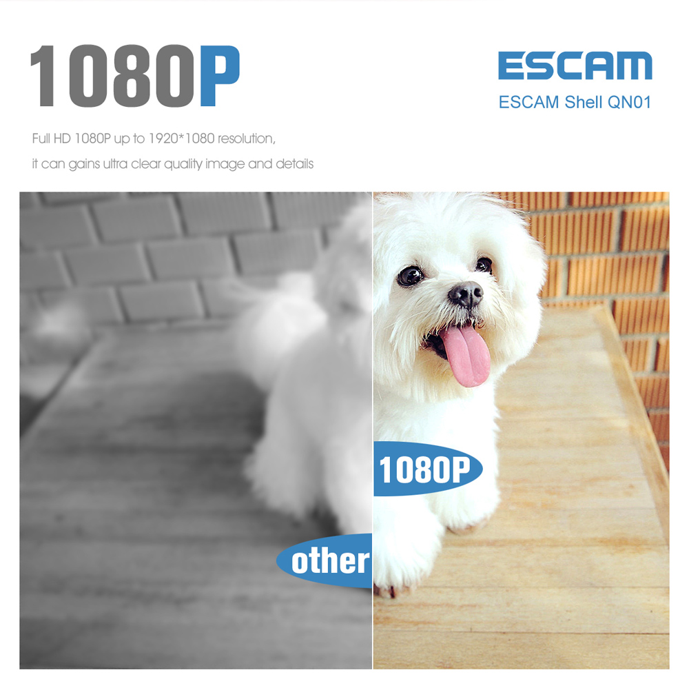 ESCAM Shell QN01 1080P Wireless IR-CUT Night Vision IP Camera with Motion Detection