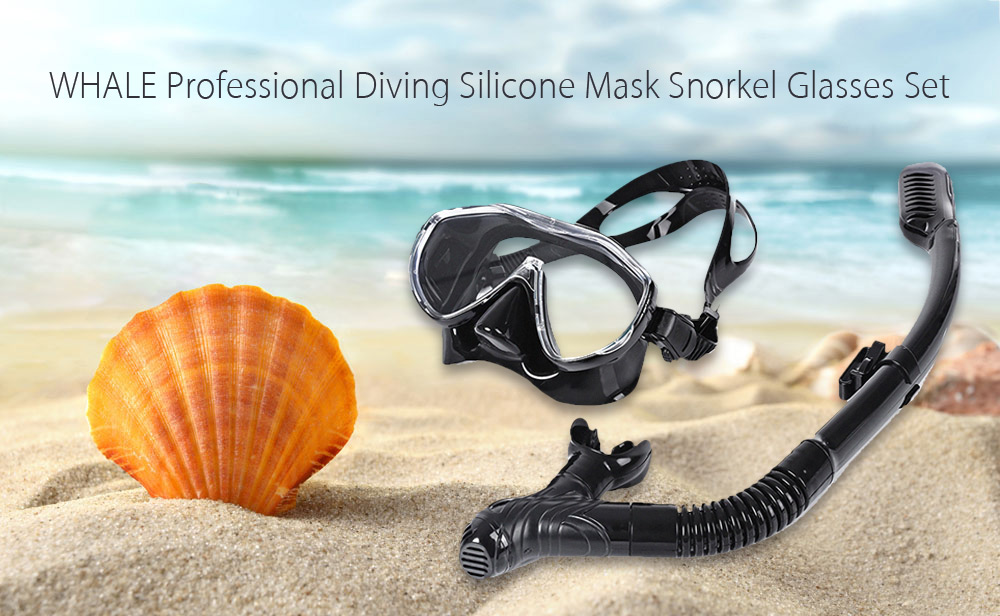 WHALE Professional Diving Silicone Mask Snorkel Glasses Set