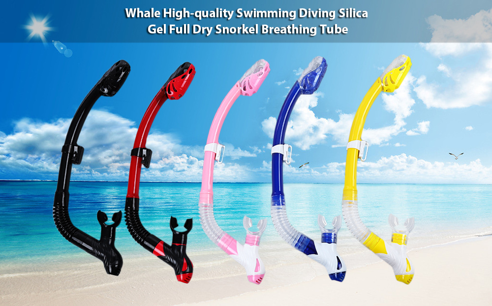 Whale Swimming Diving Silica Gel Full Dry Snorkel Breathing Tube