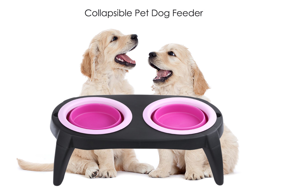 Travel Collapsible Pet Feeder Silicone Double Dog Bowl Removable Dish
