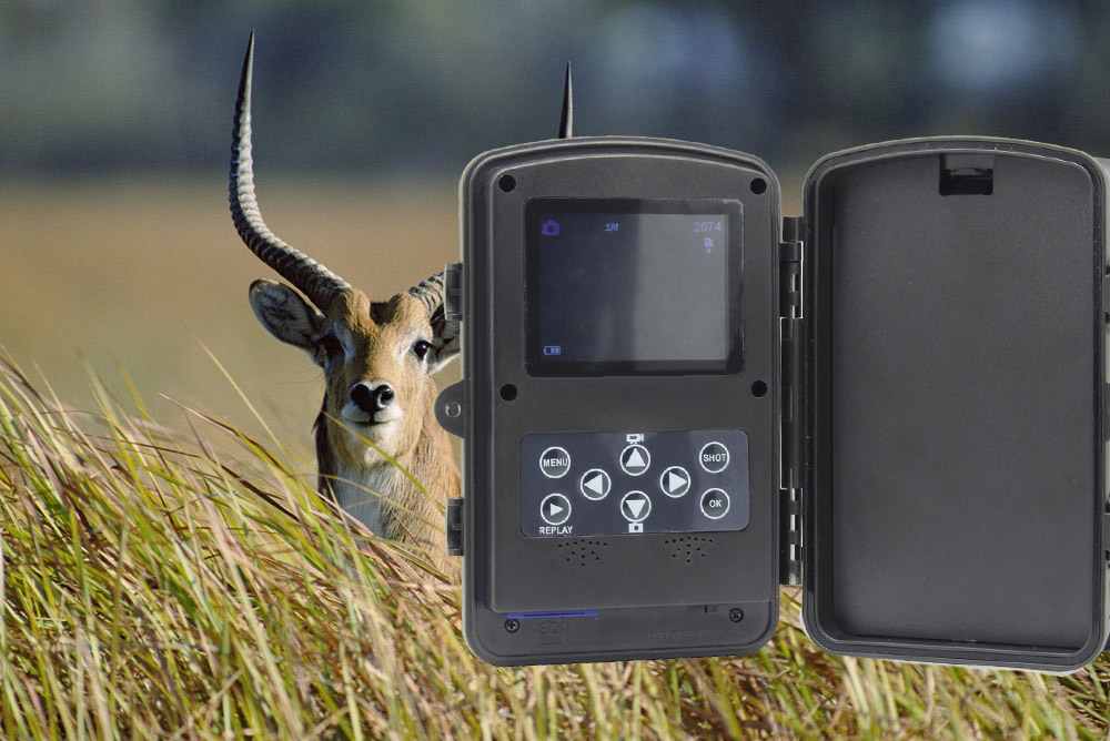 RD1003 720P HD Wide Angle Motion Detection Outdoor Hunting Trail Camera