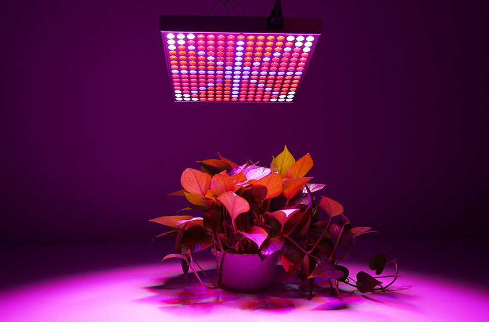 45W ( True 30W ) SMD 2835 LED Grow Light Fill Lamp for Hydroponics Indoor Plant with 225 LEDs