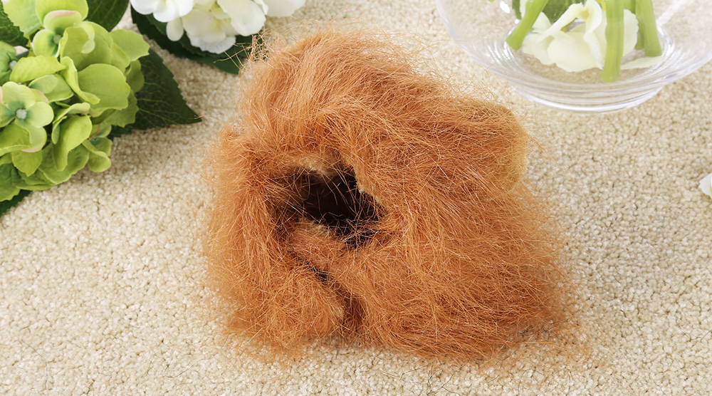 Cat Wig Collar Funny Lion Pet Ear Cosplay Hairpiece
