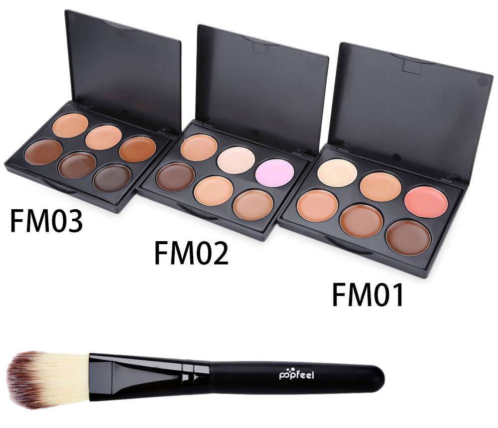 Professional 6 Color Foundation Contour Concealer with Powder Brush