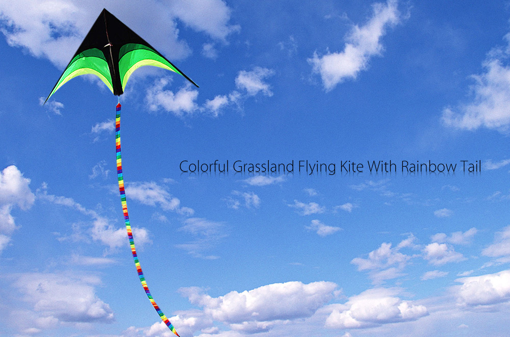 2m Grassland Flying Kite with Tail Outdoor Sports Game