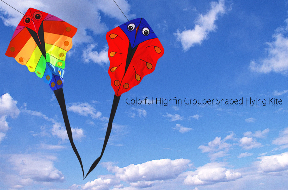 Colorful Highfin Grouper Shape Flying Kite Outdoor Sports Game