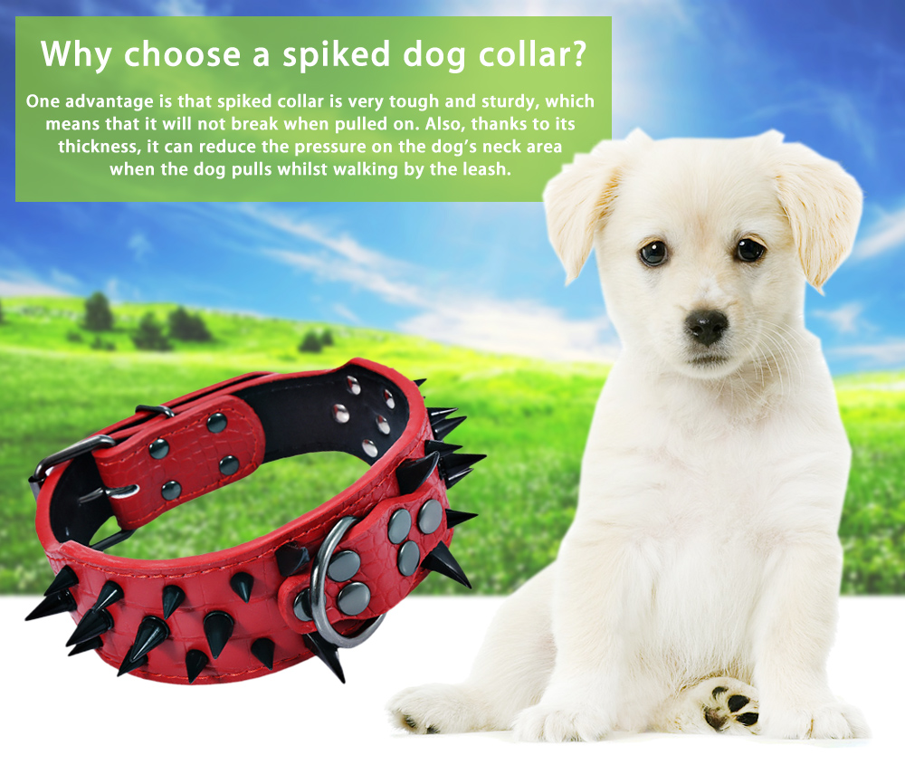 2 inch Width Sturdy Adjustable Pet Dog Spiked Leather Collar