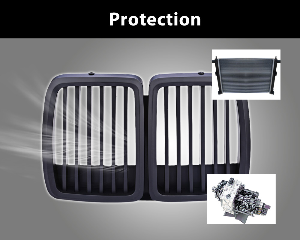 Automobile Plastic Fixed Grid for BMW