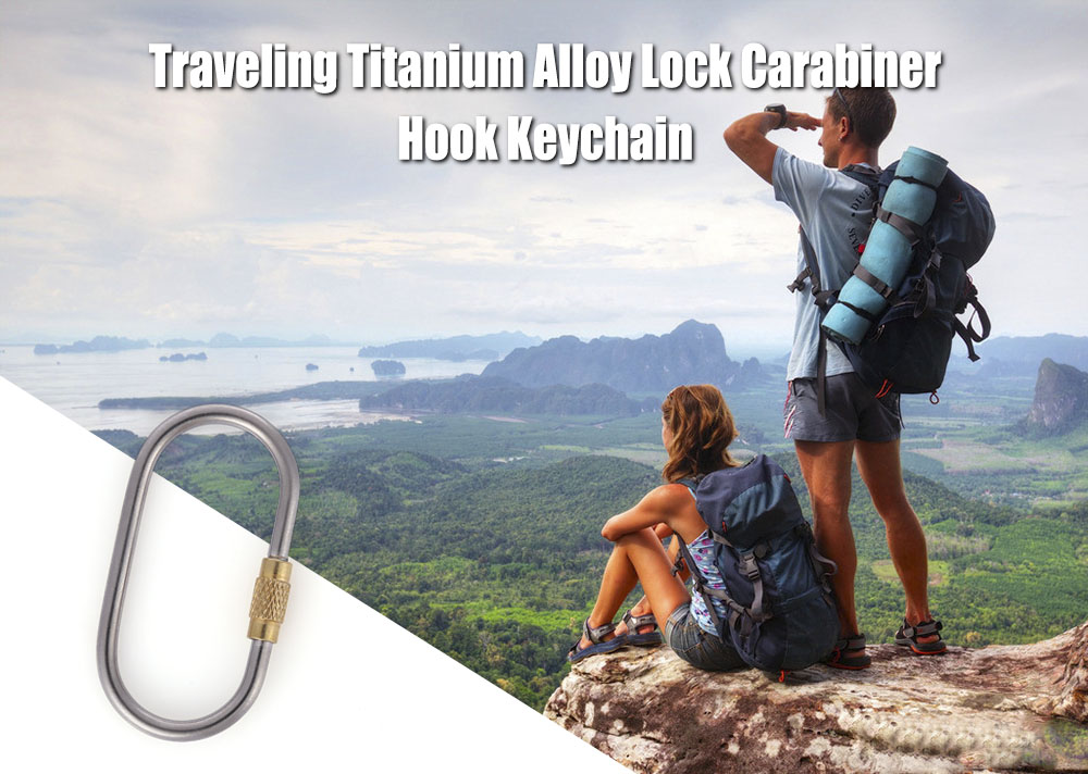 Outdoor Traveling Titanium Alloy Screw Lock Carabiner Keychain for Hanging Water Bottle