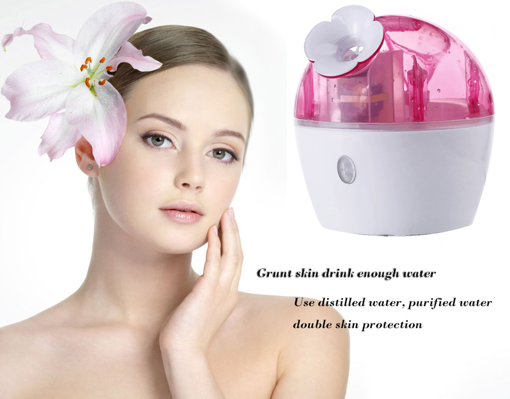 Cool Mist Moisturizing Cleaning Pores Clear Blackheads Acne Facial Steamer