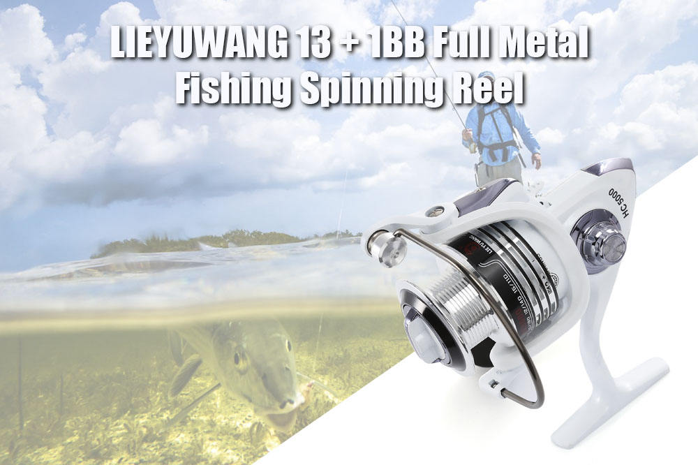 LIEYUWANG 13 + 1BB Full Metal Fishing Spinning Reel with Exchangeable Handle
