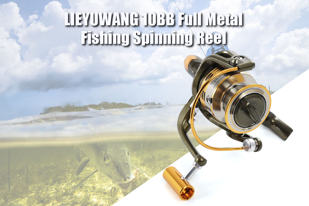 LIEYUWANG 10BB Full Metal Fishing Spinning Reel with Exchangeable Handle