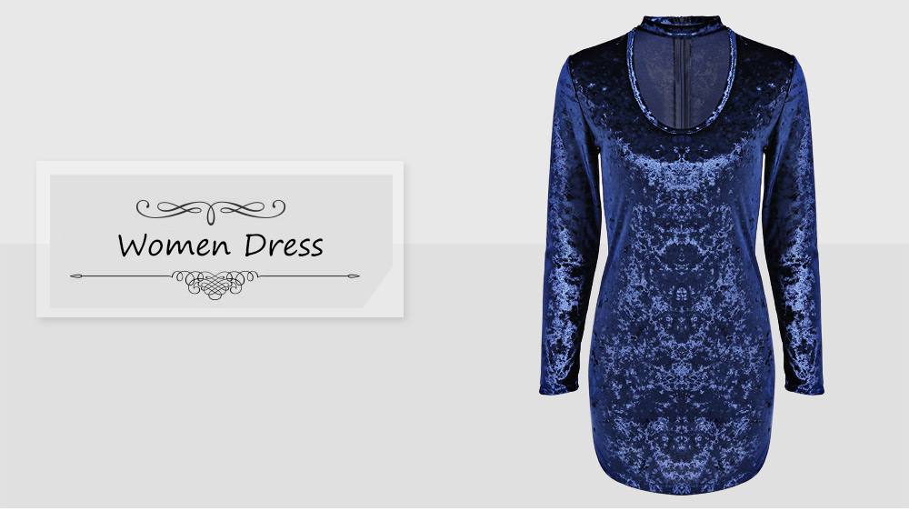 Brief Long Sleeve Stand Collar Hollow Out Velvet Dress for Women