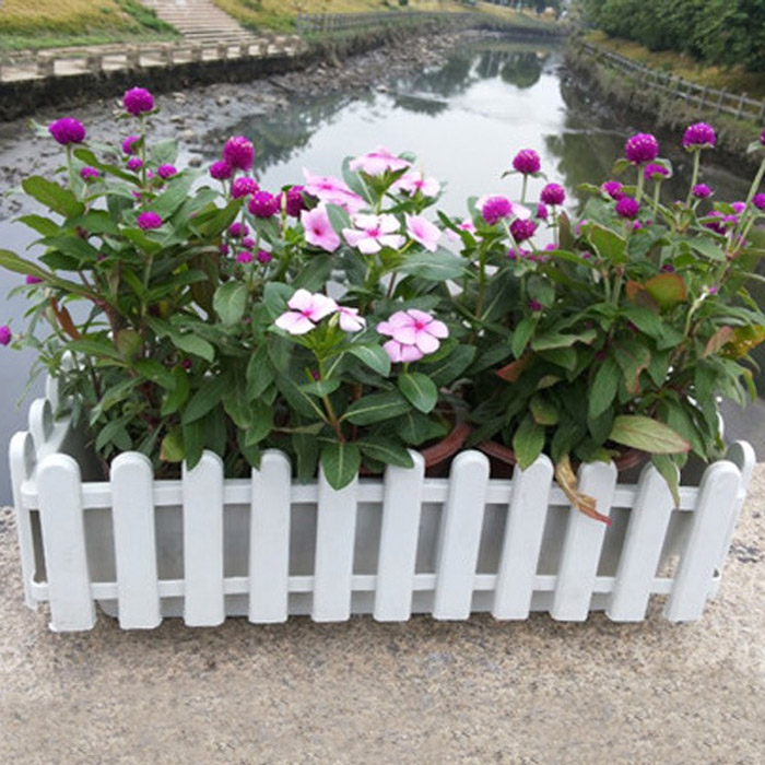 Fence Style Plants Flowerpot Garden Fleshiness Flower Pot