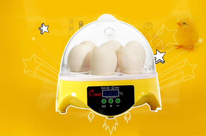 HHD Automatic Digital 7 Eggs Incubator for Duck Bird Chicken Egg