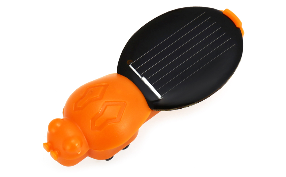 Novelty Solar Energy Insect Pattern Educational Toy for Kid