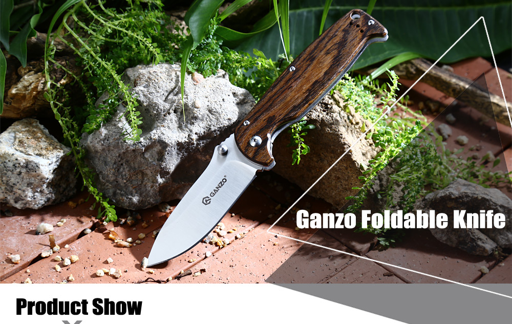 Ganzo G742 - 1 - WD1 Frame Lock Foldable Knife with Sanding Processing