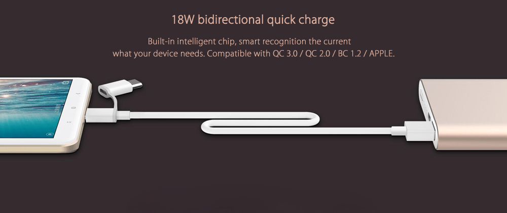 Original Xiaomi Bidirectional Quick Charge 10000mAh Portable Power Bank Type-C Input Interface with 2-in-1 USB Cable