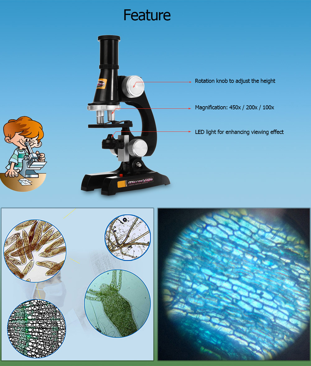 450x / 200x / 100x Microscope Kit for Children Early Studying Education