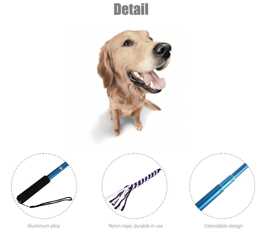 Outdoor Pet Toy Exercise Training Tools for Dog
