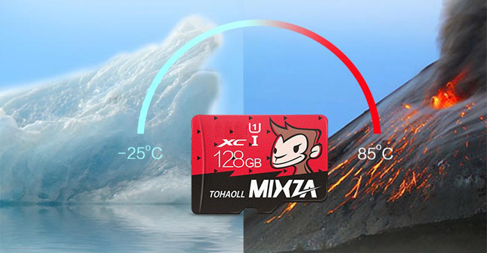 MIXZA TOHAOLL SDHC Micro SD Card Monkey Year Limited Edition Memory Cards Storage Device