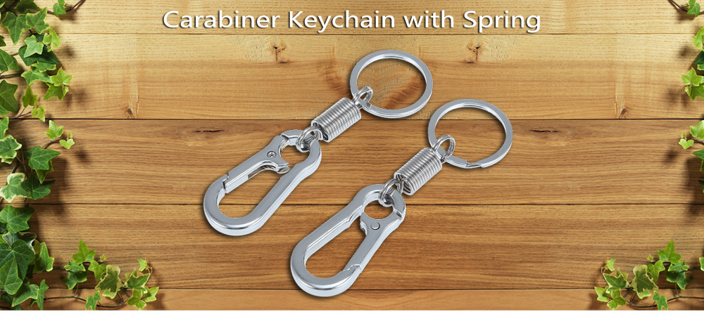 2pcs Aluminum Alloy Portable Carabiner Keychain with Spring / Key Ring