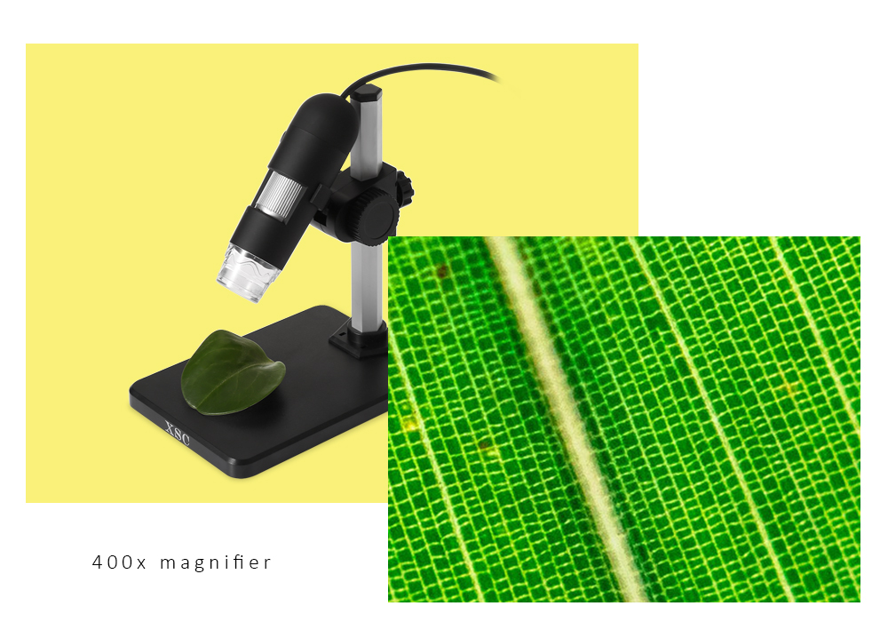 XSC Digital Microscope with 400x Magnification 8 LED Lights