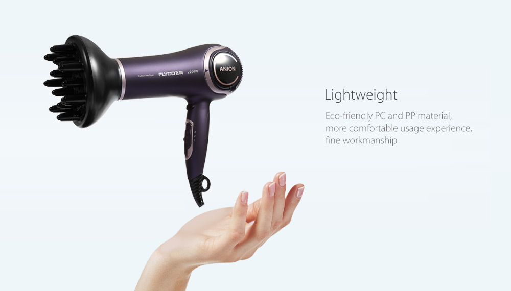 FLYCO FH6620 Fashionable Hair Dryer Low Noise Design