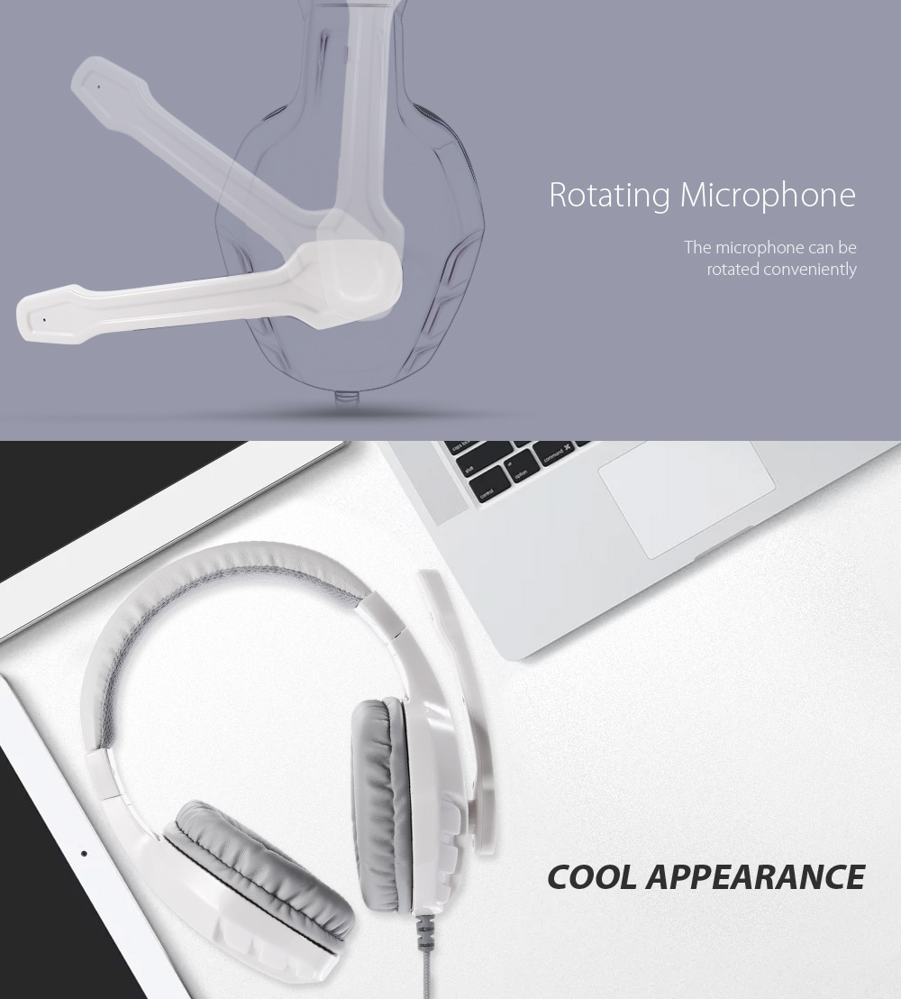 Lupuss - 2008 Noise-canceling On-cord Control PC Headset