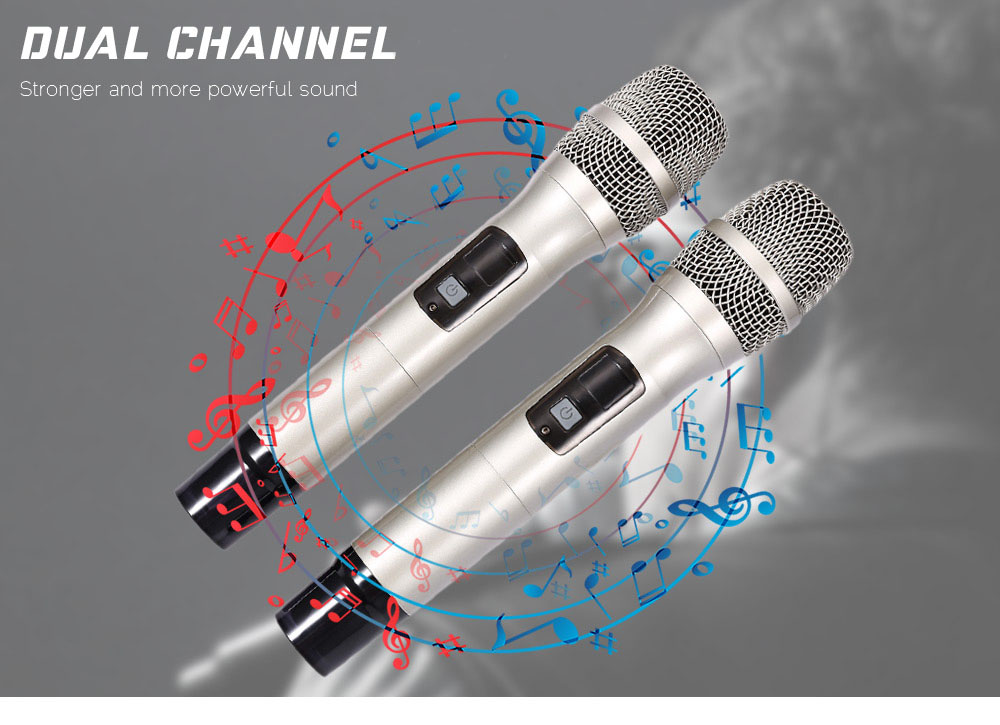 WEISRE U - 3316 720 - 770MHz UHF Dual Channel Transmitter Karaoke Professional Wireless Handheld Microphone Set